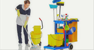 Limpieza de apartamentos turísticos (399)